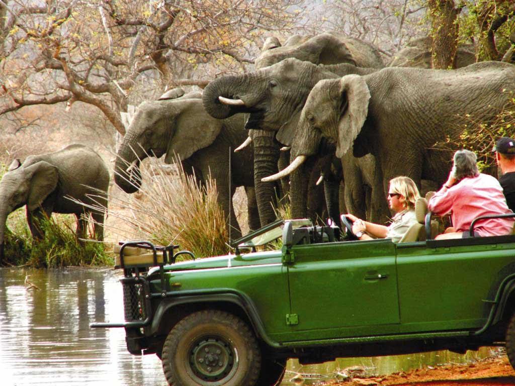 Nkembeni Safari Camp